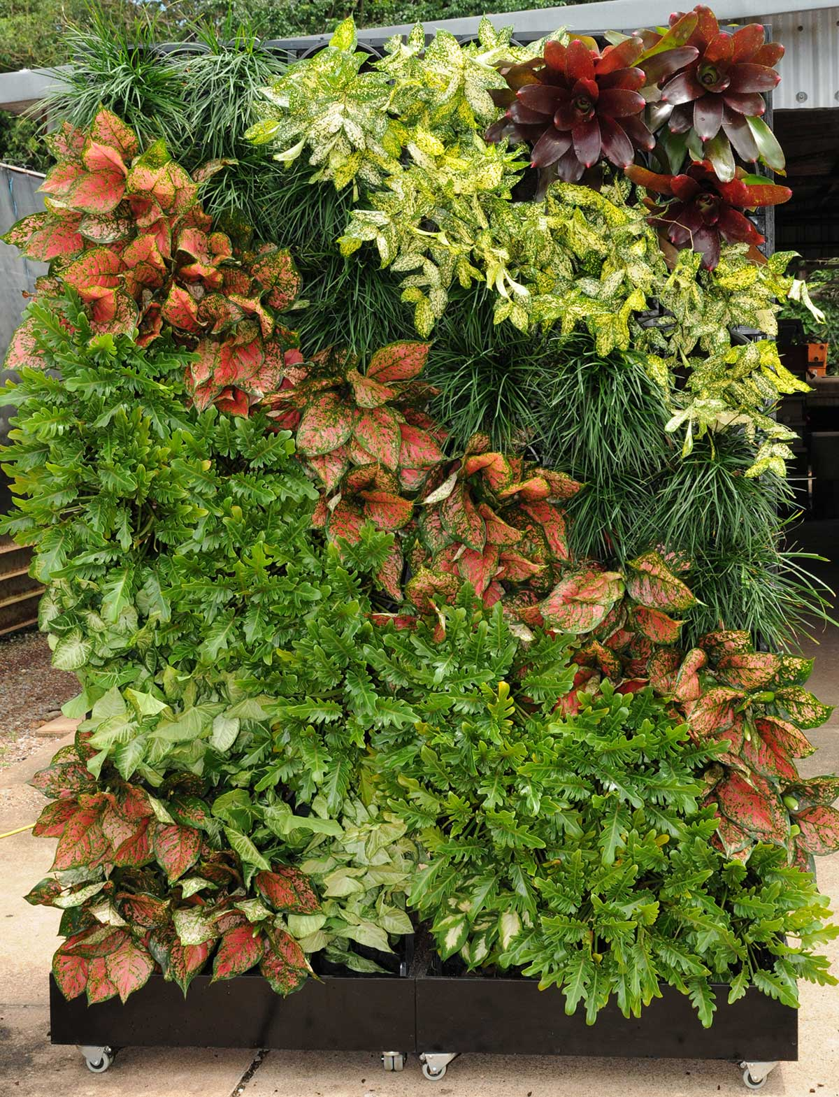 Portable Vertical Garden hire